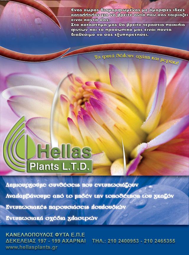 Hellas Plants brochure